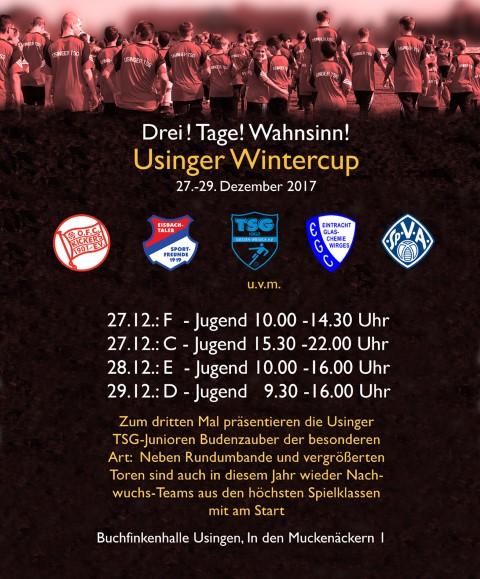 Hallenturniere Jugendfussball 2017