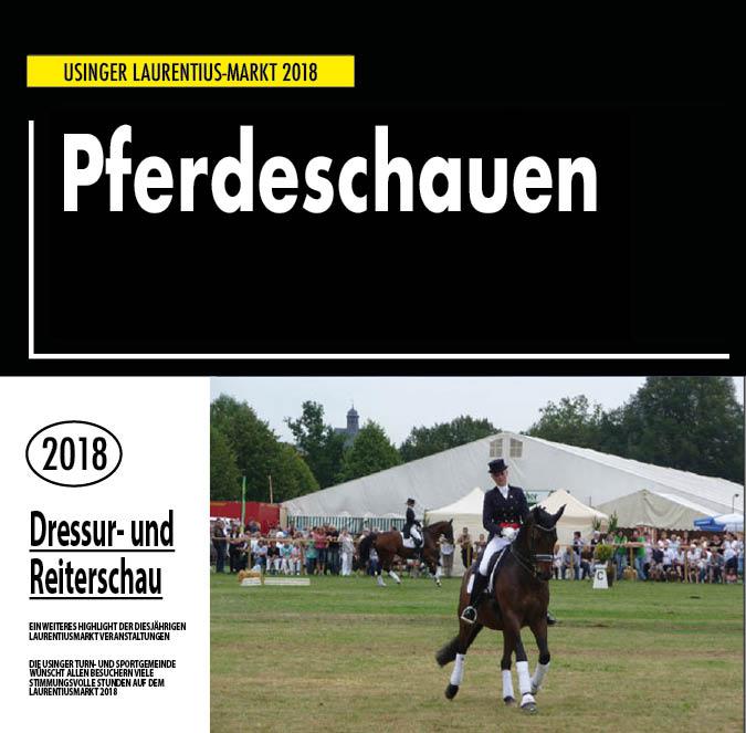 Bezirks Pferdeschau auf dem Usinger Laurentius Markt 2018. Präsentiert von der Usinger Turn- und Sportgemeinde (UTSG)